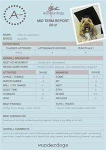 Diy Certificate Dog Obedience Report Cards Google Search Report Card