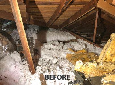 energy attic insulation removal  dallas plano texas