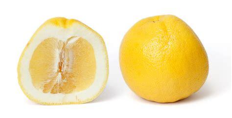 yellow white file grapefruit and cross section edit jpg wikimedia commons