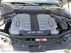 W12 Engine Specs  W12  Free Engine Image For User Manual Download