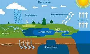 Water Cycle Explanation