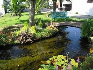 Jardin Avec Bassin : bassin de jardin ~ Melissatoandfro.com Idées de Décoration