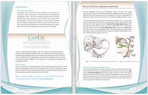 CanLiv projects