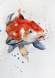 Watercolor Painting Koi Fish Drawing