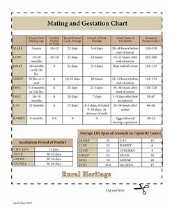 Cattle Gestation Chart Rural Heritage Mating And Gestation Chart