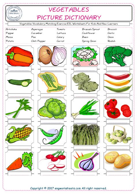 vegetables esl printable picture english dictionary