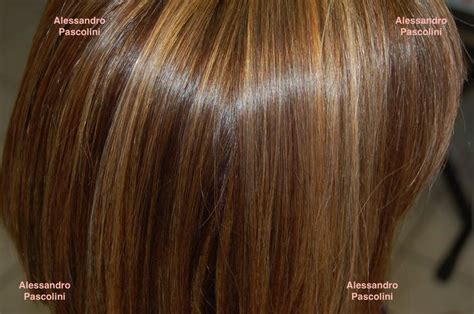 matrix color formulas silver hair color formulas matrix brown hairs of