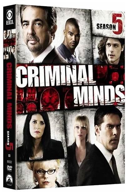 Season Criminal Minds Dvd Temporada Five Wiki