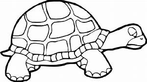 Baby Turtle Coloring Pages Cute Kids Colouring - grig3.org