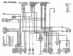 Category Wiring Wiring Diagram