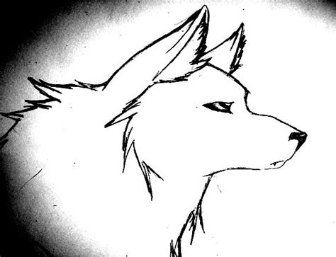 Cool Wolf Drawings Easy Loading