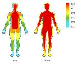 human temperature it all