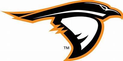 Ravens Anderson Football Clipart University Lady Wikipedia