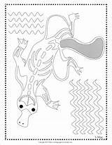 Coloring Ray Pages Platypus Aboriginal Colouring Fish Dot Painting Adult Xray Indigenous Ins Australian Template Sherimcclurepitler Australia Drawings Names Mac sketch template