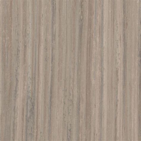 Linoleum Click Flooring Home Depot by Marmoleum Click Trace Of Nature 9 8 Mm Thick X 11 81 In