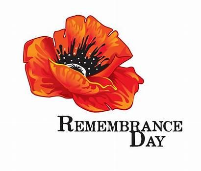 Remembrance Poppy Flowers Veterans Flower Service Illustration