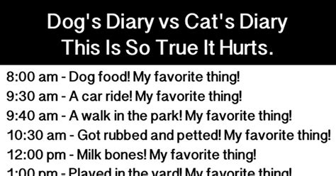 diary cat dog comparison valid proves argument zone still why