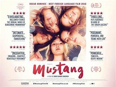 Mustang Poster Film Deniz Gamze State Ergueven