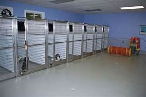 dog kennels bing images dog buildings my futures so With best dog kennel design