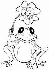 Coloring Frog Cartoon Ages Frogs Printable Coloringpagesfortoddlers Sheets Books Adult Animals Animal sketch template