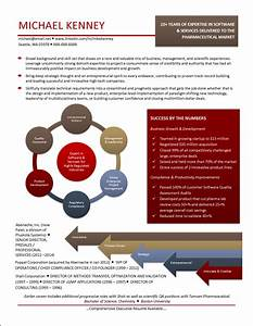 Infographic Resume Example for Pharmaceutical Market