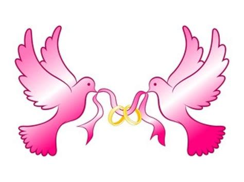 dove clipart wedding ring free clipart on