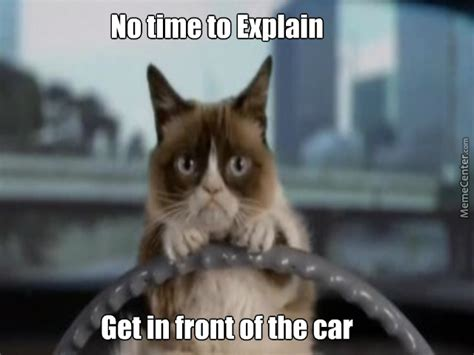 funny grumpy cat meme    laugh wishmeme