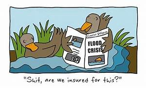 15 best images about Flood Insurance Cartoons on Pinterest ...