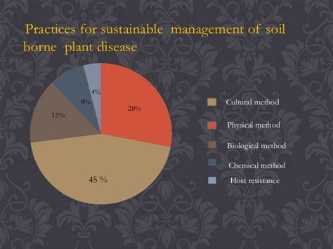 Avs Sustainable Management Of Soil Borne Plant Diseases