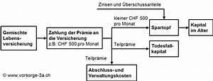 Rückkaufswert Lebensversicherung Berechnen : freie vorsorge 3b was bieten versicherungen gemischte lebensversicherung ~ Themetempest.com Abrechnung