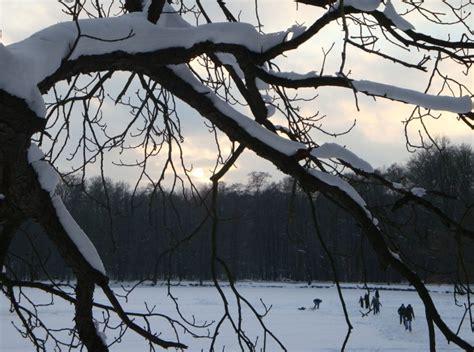 l for winter depression lawsuits shed light on seasonal depression brain blogger