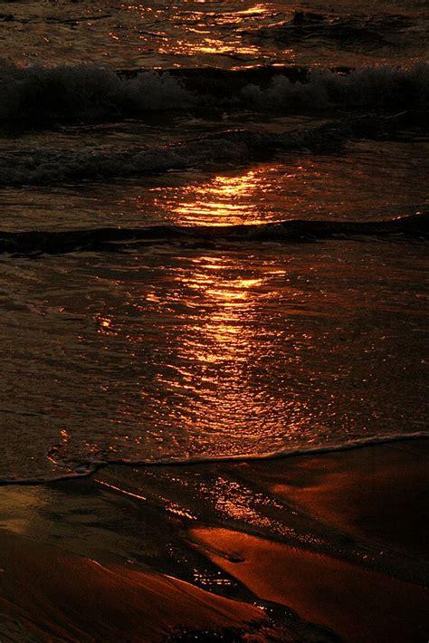 golden water brown aesthetic brown aesthetic