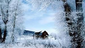Natural Hd Snow Fall Wallpaper