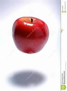 Gravitational Force Apple Stock Photo - Image: 47226885