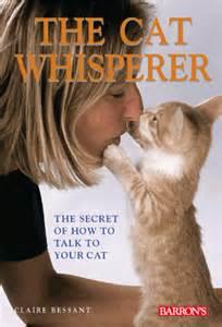 the cat whisperer the cat whisperer book by bessant