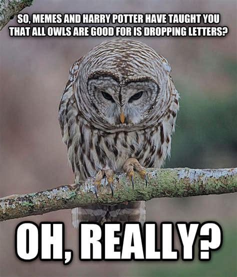Owl Who Meme - livememe com oh really owl