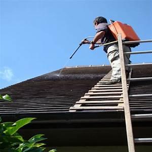 Tarif Nettoyage Toiture Hydrofuge : d moussage toiture tarifs et traitements guide nettoyage ~ Melissatoandfro.com Idées de Décoration