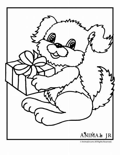 Coloring Birthday Puppy Pages Printable Happy Cards