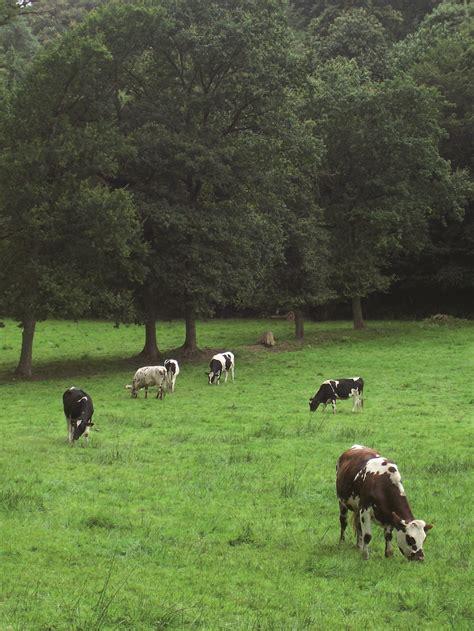 chambre agriculture haute normandie agriculture biologique les elu e s eelv de la region