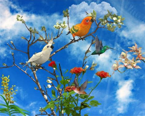 Animated Gif Nature Wallpapers - animated nature clipart hd