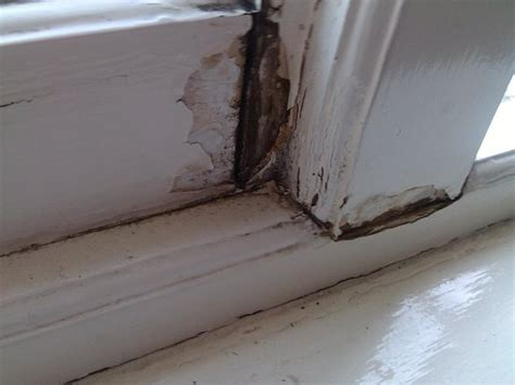 How To Fix A Rotted Window Frame  The Basic Woodworking