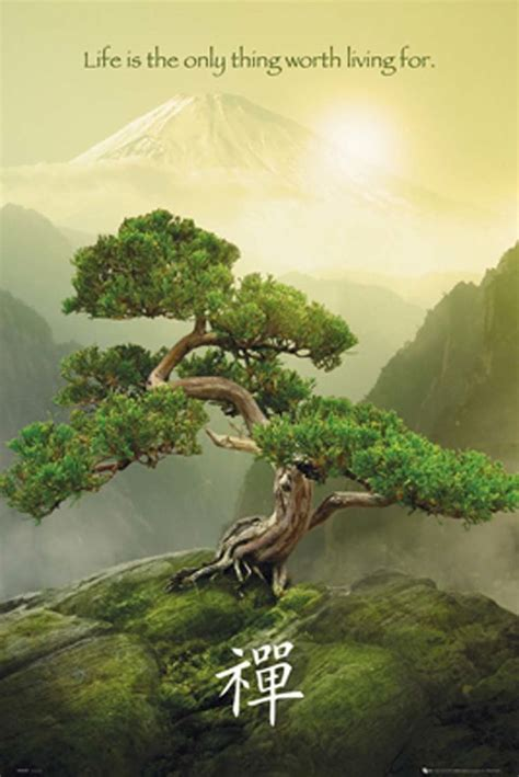 zen quote about colors zen mountain motivational poster zen moments motivational posters zen and poster