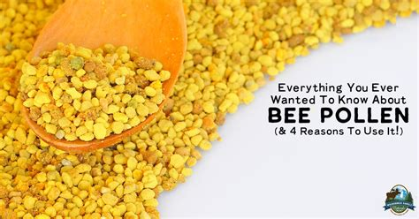 Everything You Ever Wanted To Know About Bee Pollen
