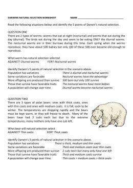 darwin s selection worksheet