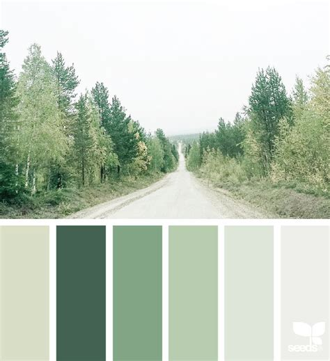 green color schemes best 25 green color schemes ideas on olive