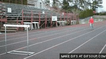 hurdle gifs find share  giphy