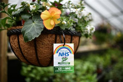 Are garden centres open in Scotland? New lockdown rules ...