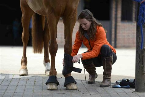 Bob warner address, phone and customer reviews. How to fit exercise boots   Horse and Rider