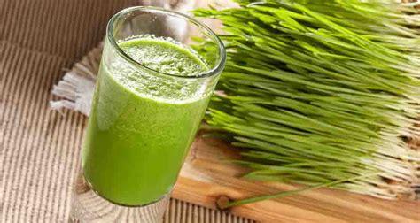 wheatgrass juice celery