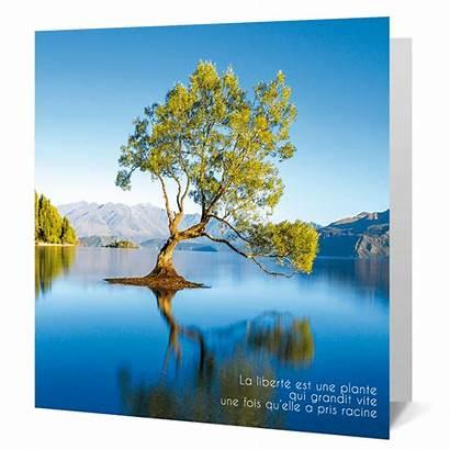 Voeux Carte Nature Cartes Photovoeux Symbole Entreprise